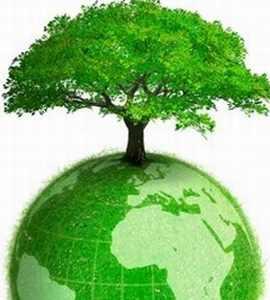 green economy-BISd