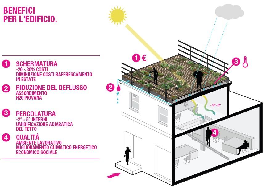 Dal tetto nero al tetto verde il progetto di piuarch for Sezione tetto giardino