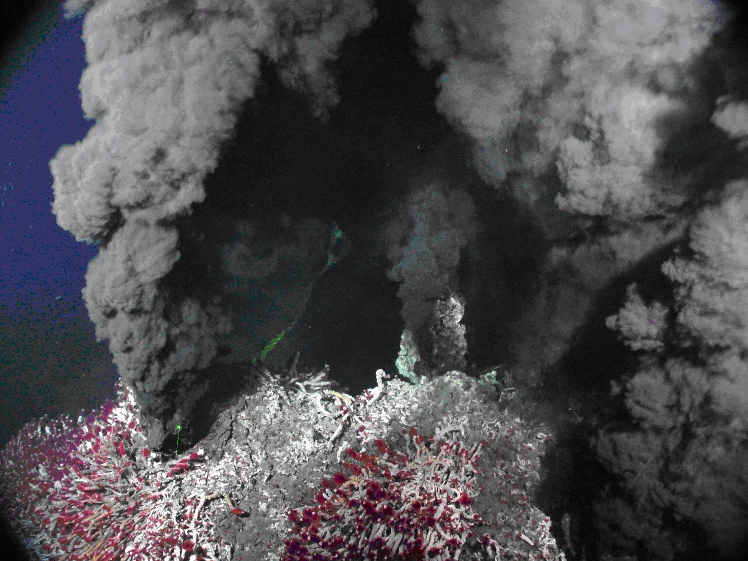 Emissioni idrotermali in acque profonde