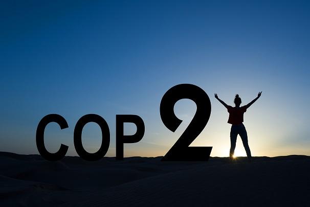 """Cop 21. A Parigi """"La ruota per il clima entra in azione lentamente"""""""