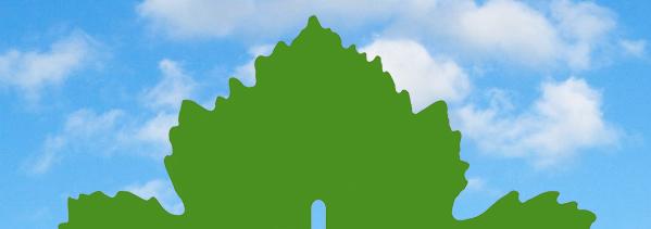 Una vite per leggere l'impronta green
