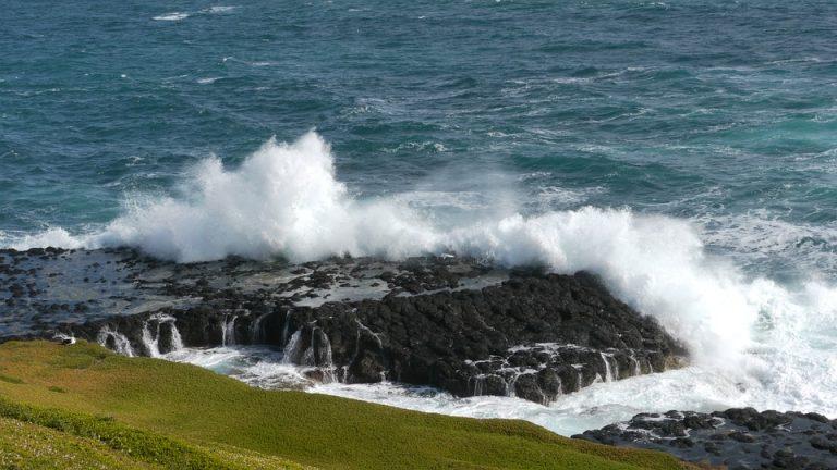 Australia, una barriera artificiale in mare per tutelare la biodiversità
