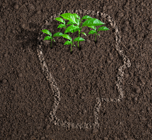 Se l'ambiente diventa un elemento essenziale per politica e industria