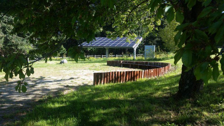 Biomasse, rinnovabili e formazione ai piccoli: progetti futuri del Parco della Sila
