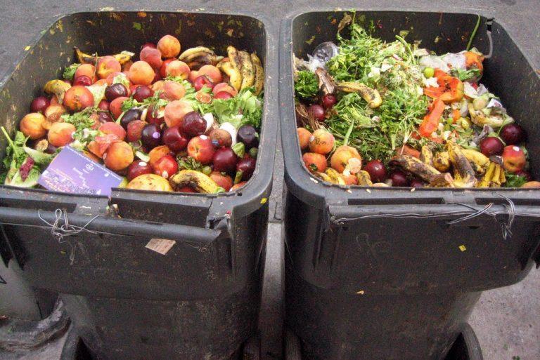 Approvata la legge contro gli sprechi alimentari
