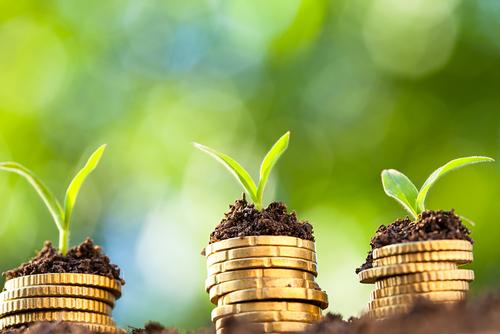 Progetto PRIMES: sugli Acquisti Verdi nei piccoli Comuni difficoltà diffusa