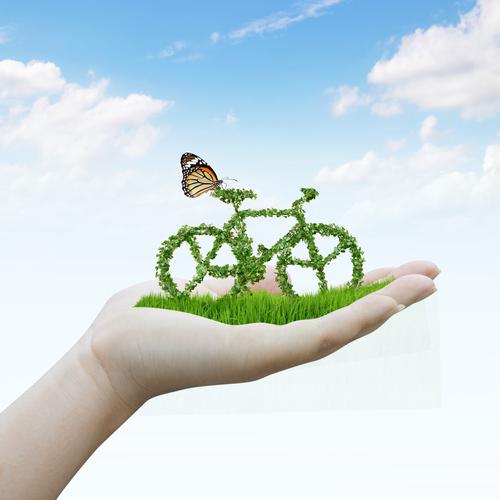 Shutterstock 133240703