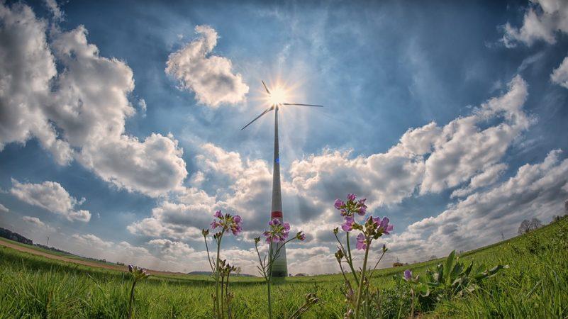 Eolico Manifesto per lo sviluppo dell'eolico