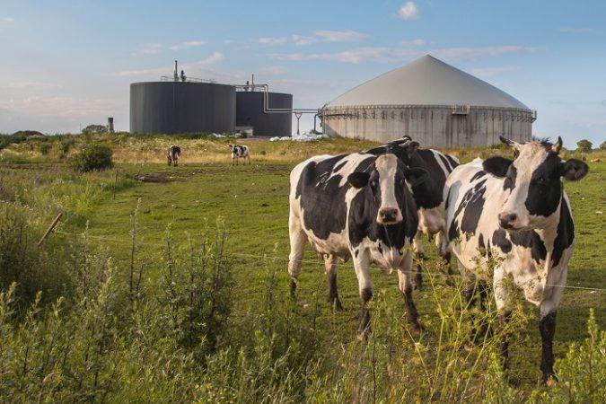Biogas E1527520431364