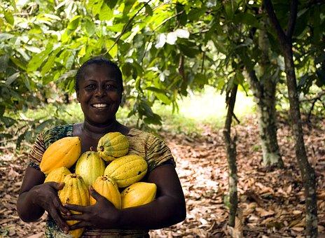 Ghana Sosteniblità Agricoltura