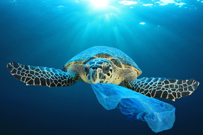 Il Parlamento UE bandisce la plastica monouso