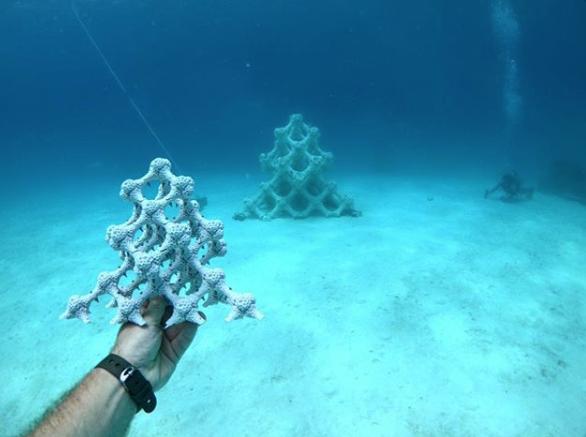 Coralloartificiale
