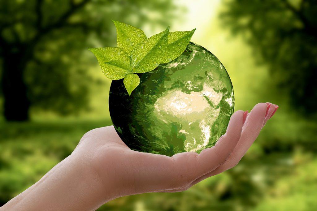 Sostenibilità Green Ambiente 1200 1024x682