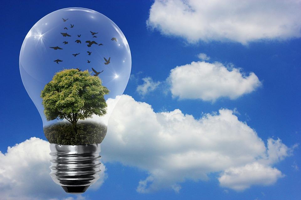 Sostenibilità Rinnovabili