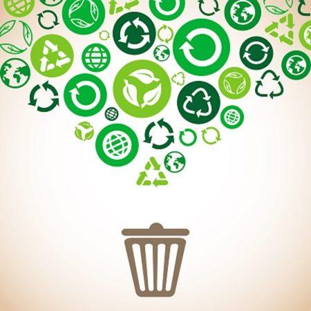 Esperto sistema rifiuti ESR