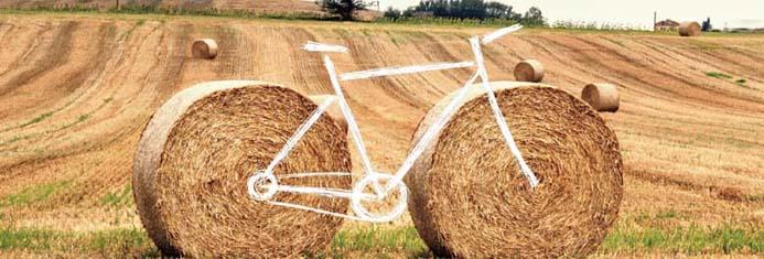 Sic2Sic Bicipaglia 2