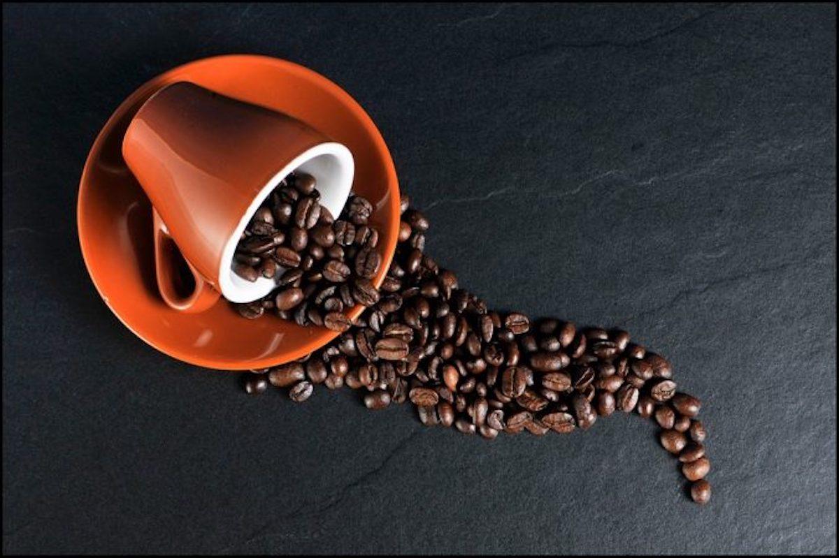 caffe di carta da scarti alimentari