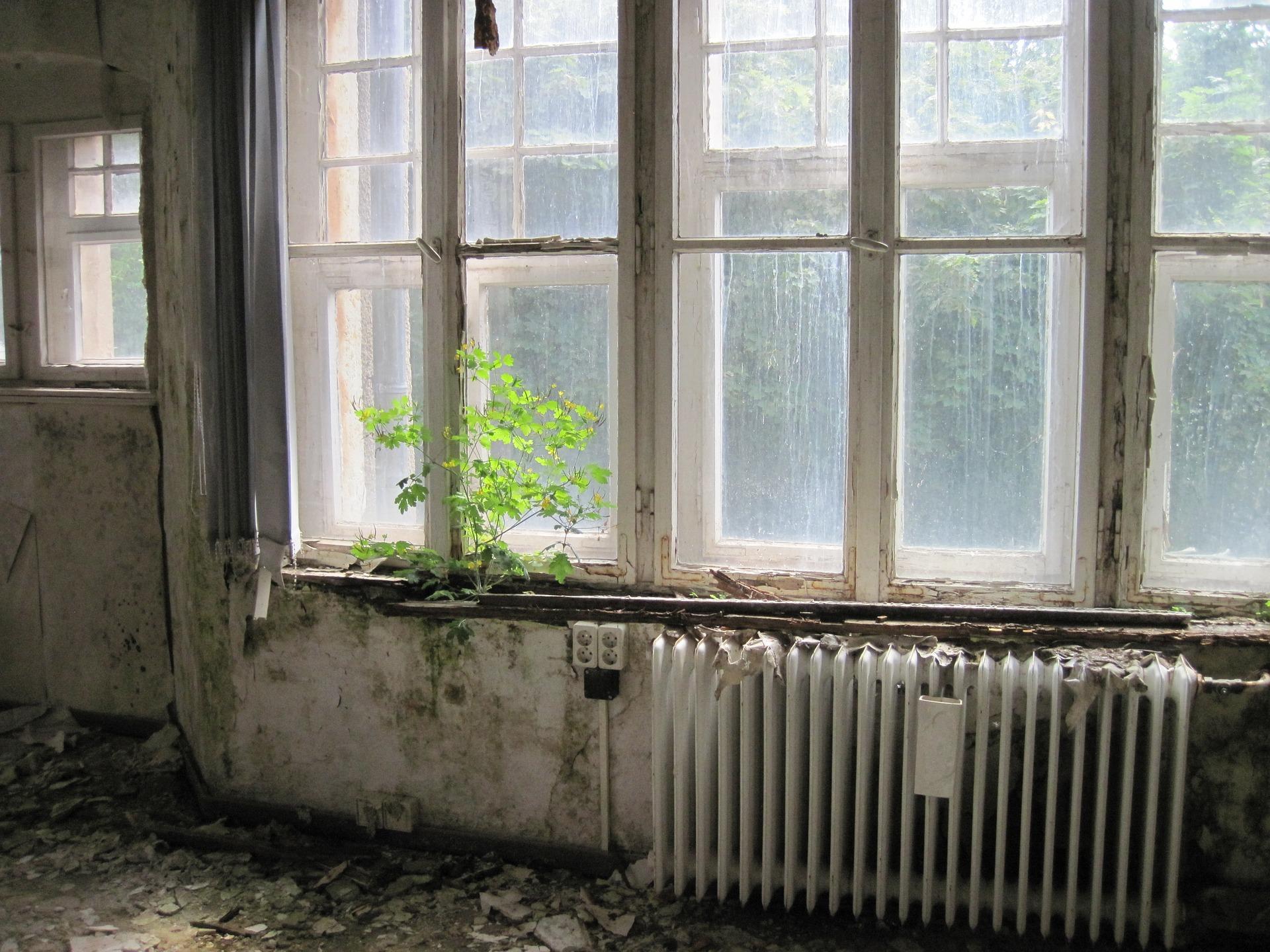 Room 1479175 1920