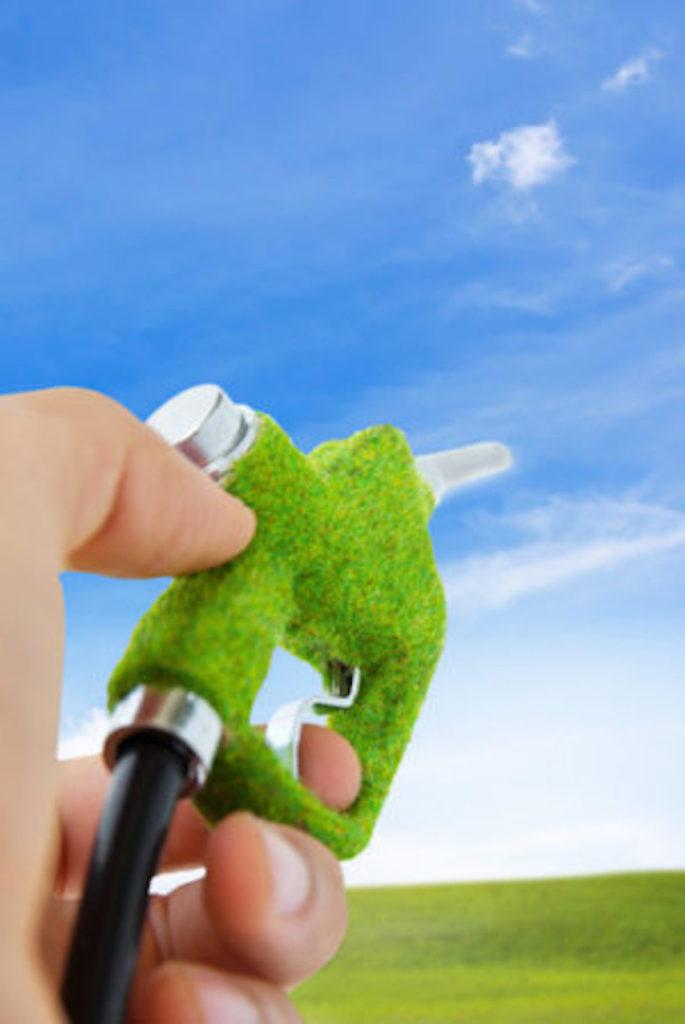 gse biocarburanti biometano