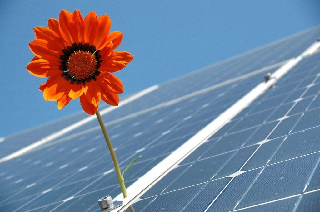 energia rinnovabile fossili