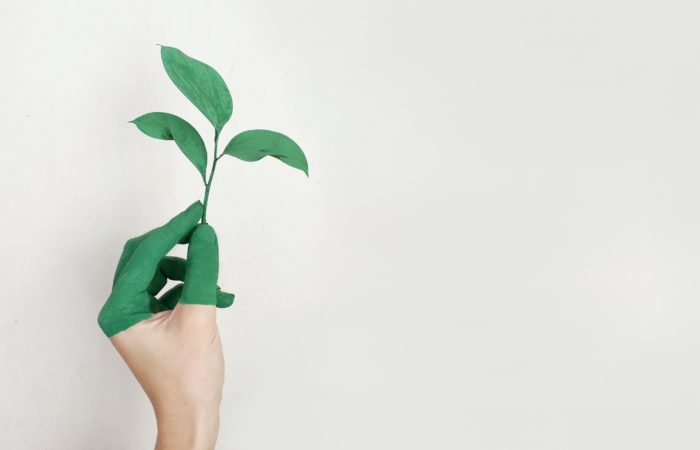 economy low carbon let's green