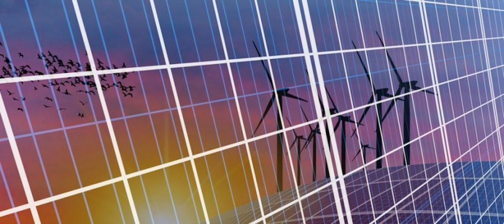 rinnovabili negli Emirati Arabi