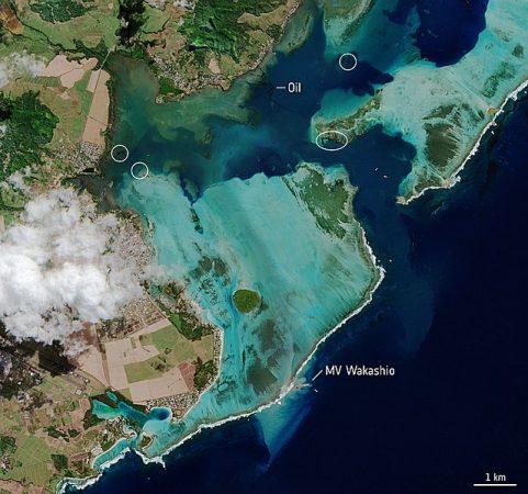 disastro ecologico Mauritius