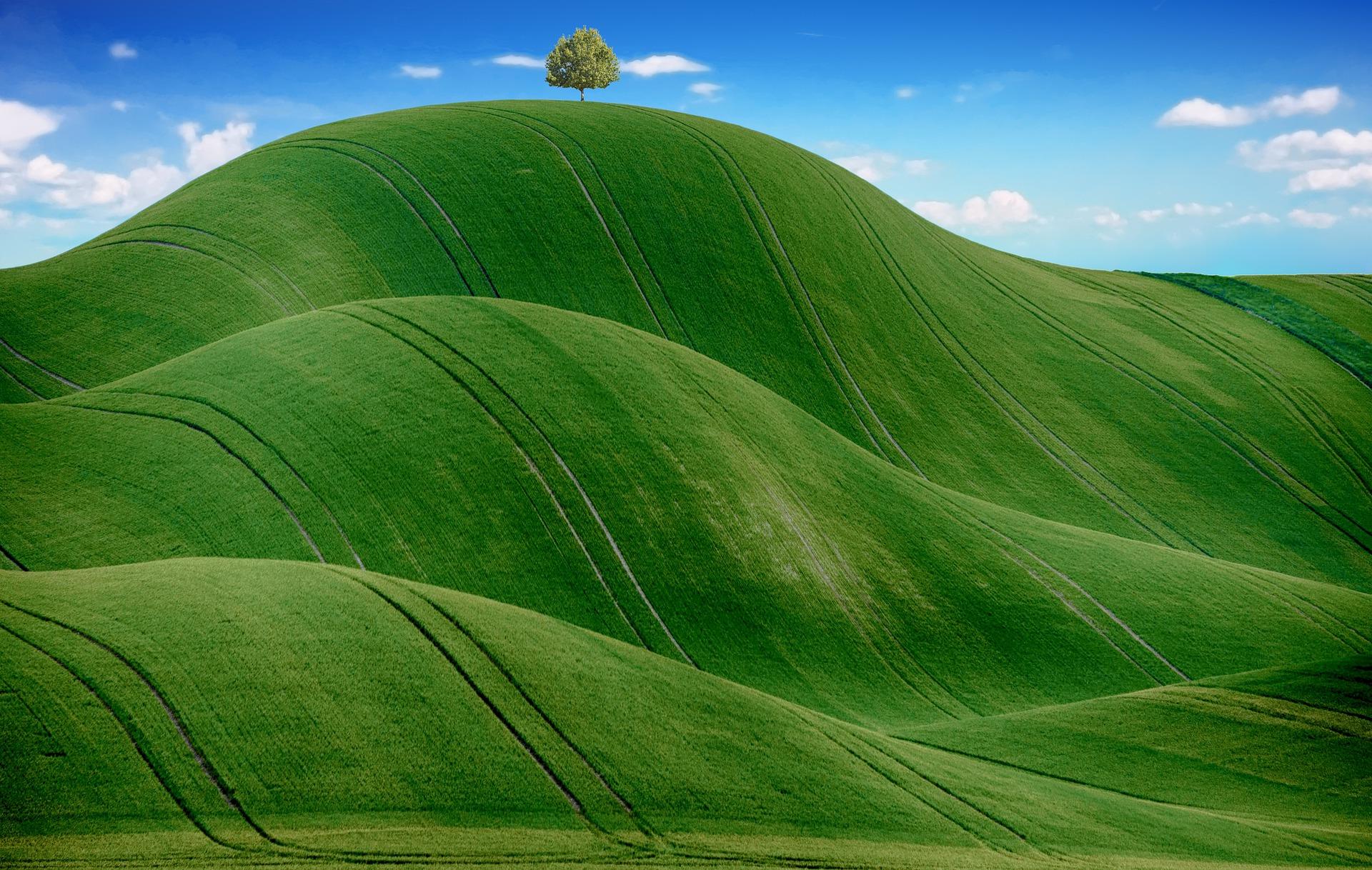 Enel nel Dow Jones sustainability World Green sostenibilità agricoltura food