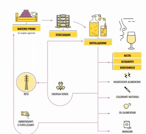 assodistil report sostenibilità filiera