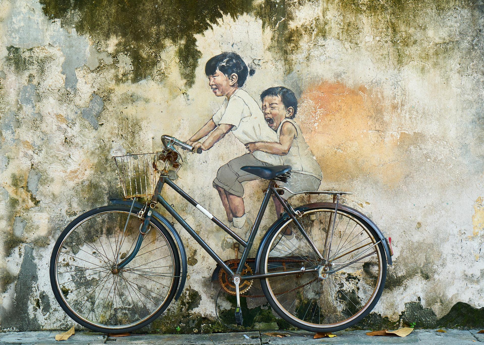 bicicletta vademecum fiab
